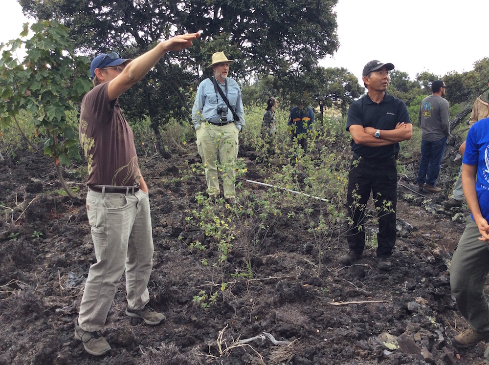 Field tour participants awestruck by the thriving native forest at Kīpuka Oweowe.
