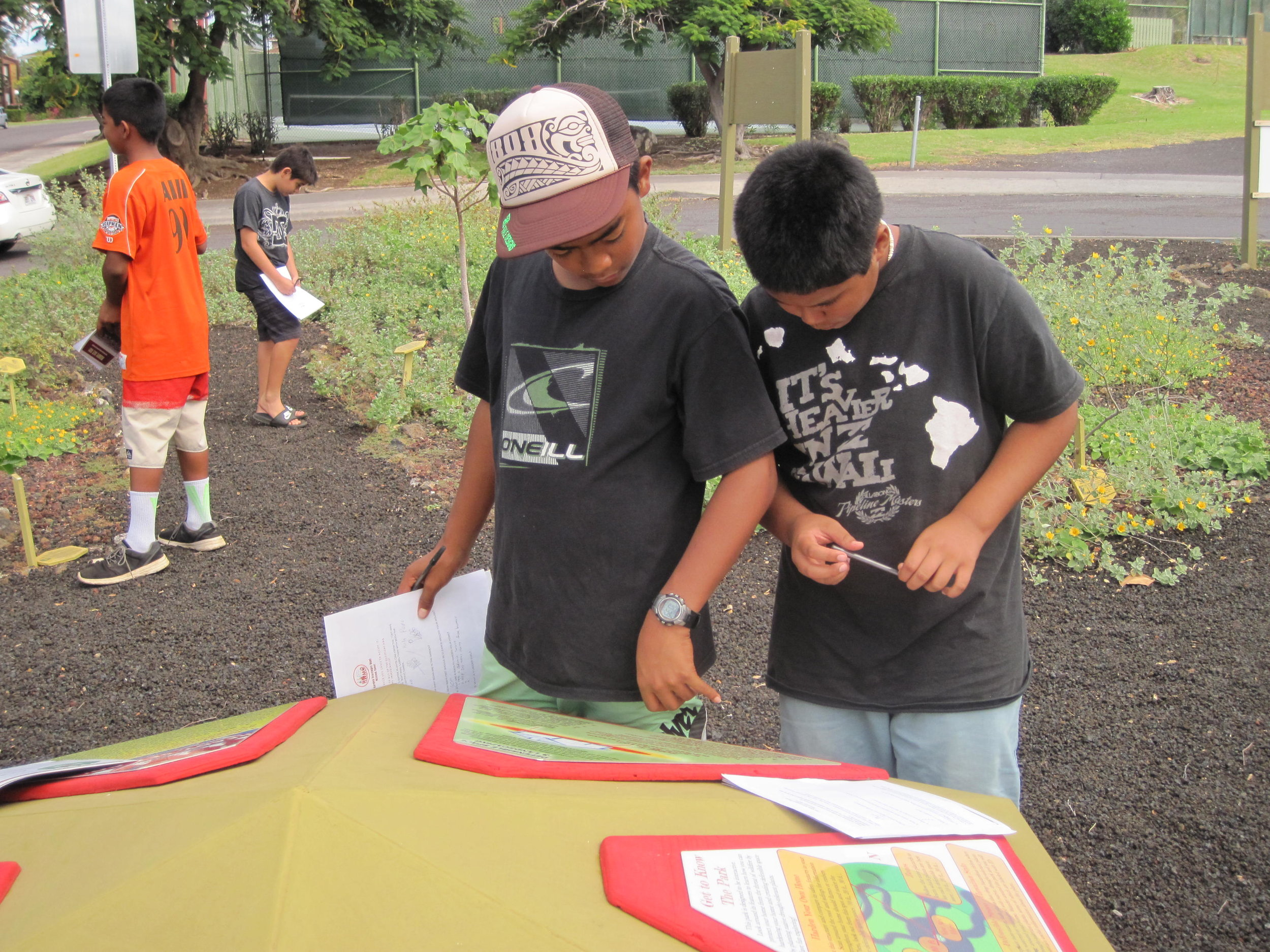 HWMO is in discussions with the Waiʻanae Library about creating a Firewise garden much like the one in Waikoloa Village.