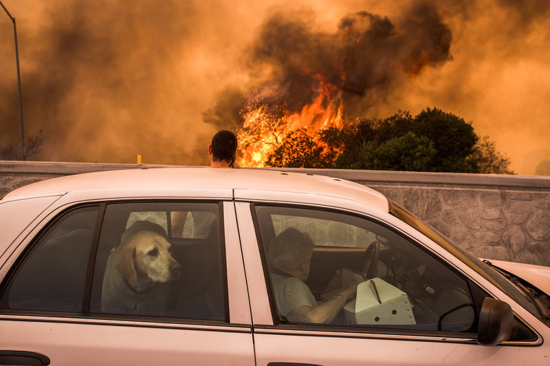"""Residents of the community of Tujunga, Calif., flee a fire near Burbank on Sept. 2. Even people much farther from the flames are feeling health effects from acrid smoke."" (David McNew/Getty Images)"