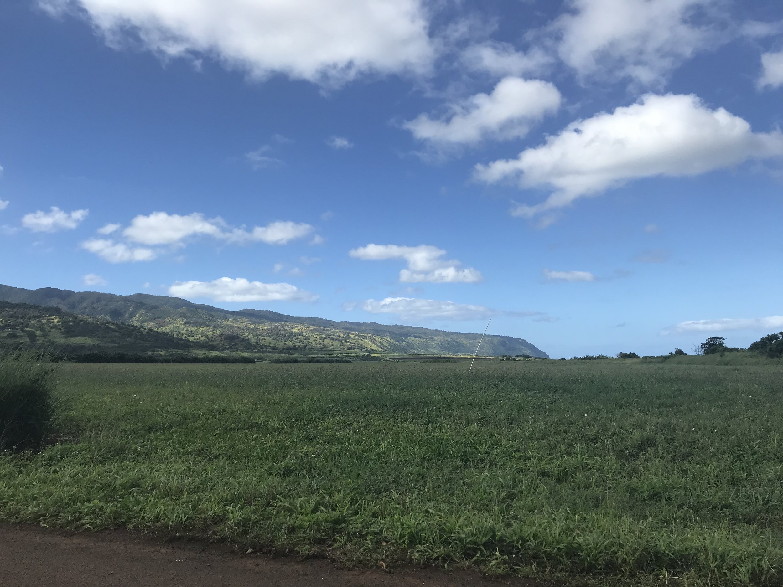 View of the North Shore from Dupont Pioneer in Waialua.