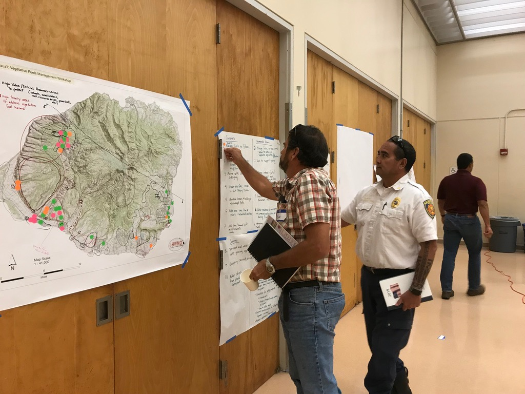 Kauai Vegetative Fuels Management Collaborative Action Planning Workshop_2_21_2019_27.jpg