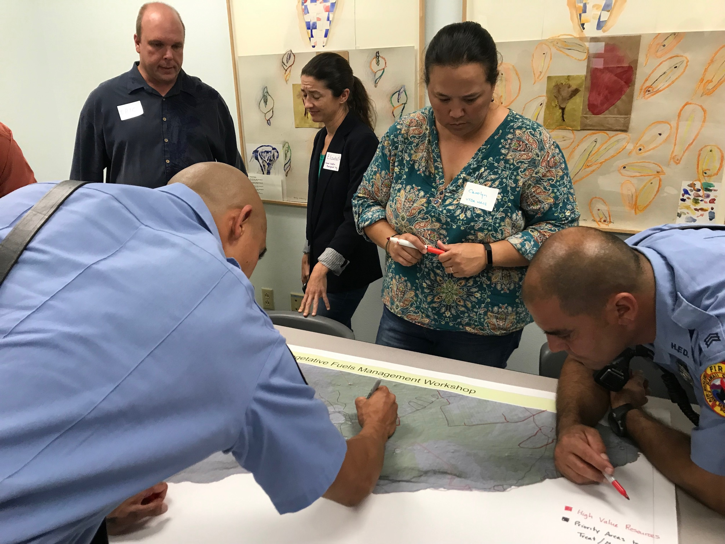Hawaii Island Hilo Vegetative Fuels Management Collaborative Action Planning Workshop_2_22_2019_5.jpg