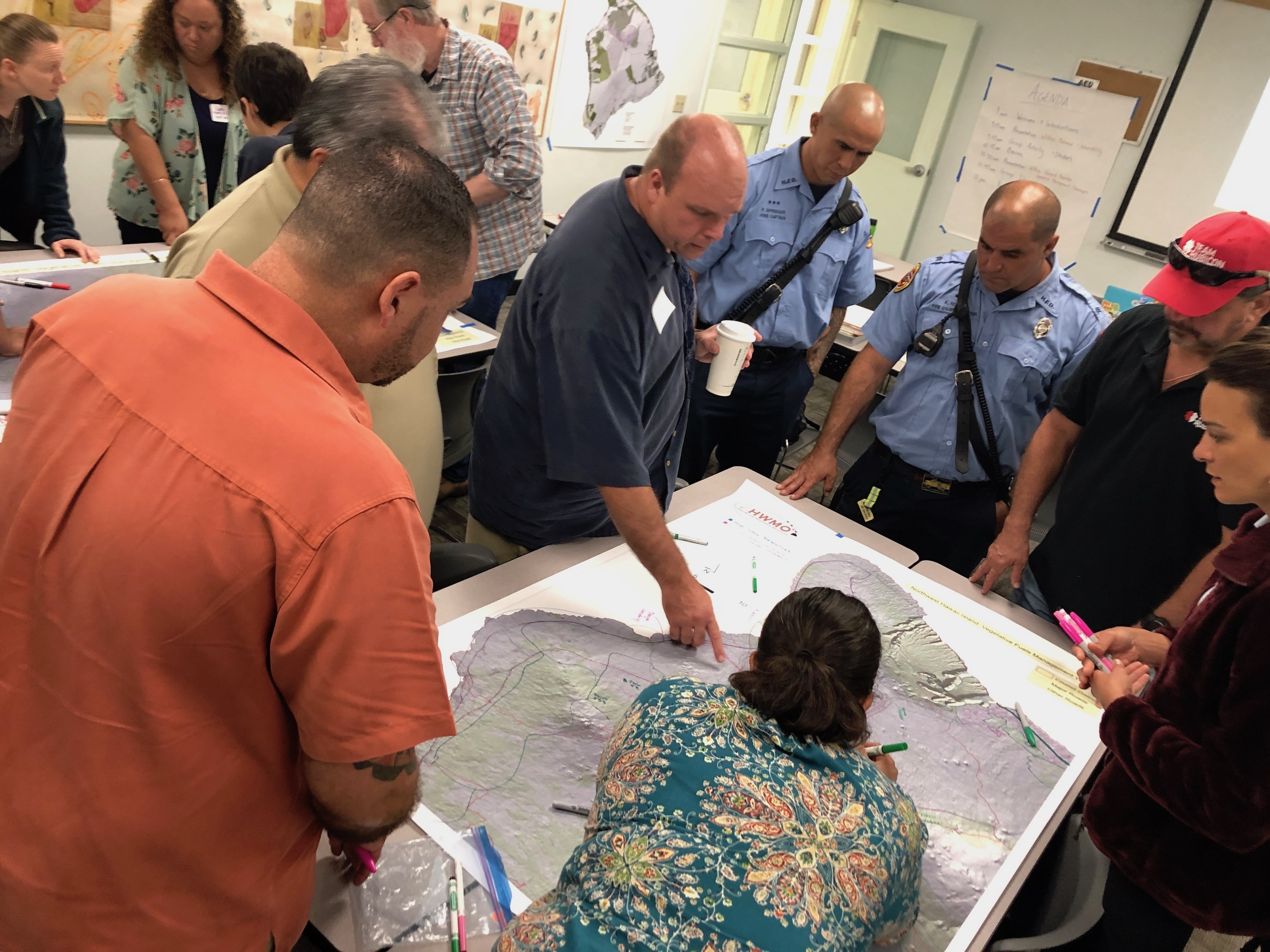 Hawaii Island Hilo Vegetative Fuels Management Collaborative Action Planning Workshop_2_22_2019_19.jpg