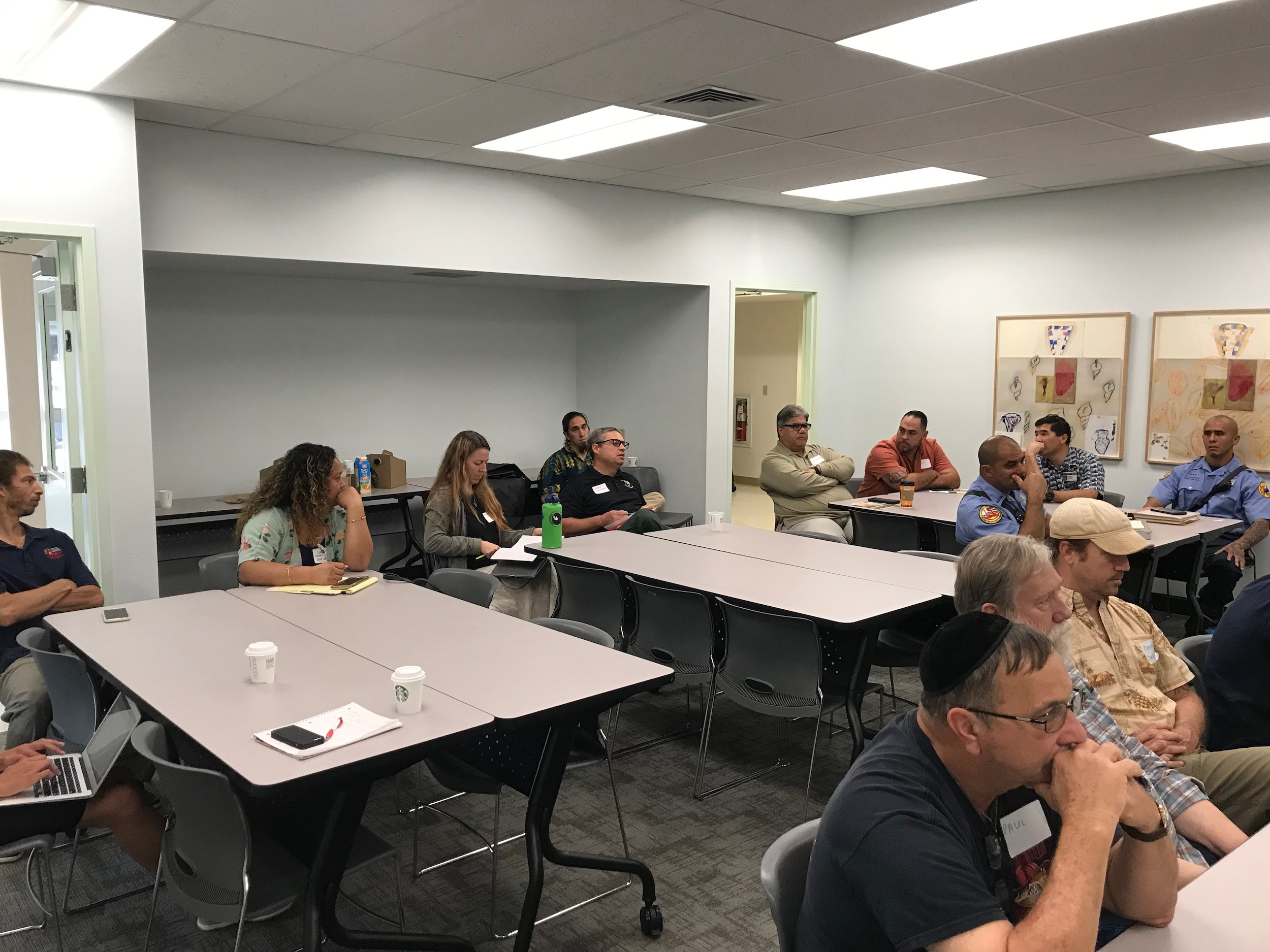 Hawaii Island Hilo Vegetative Fuels Management Collaborative Action Planning Workshop_2_22_2019_25.jpg
