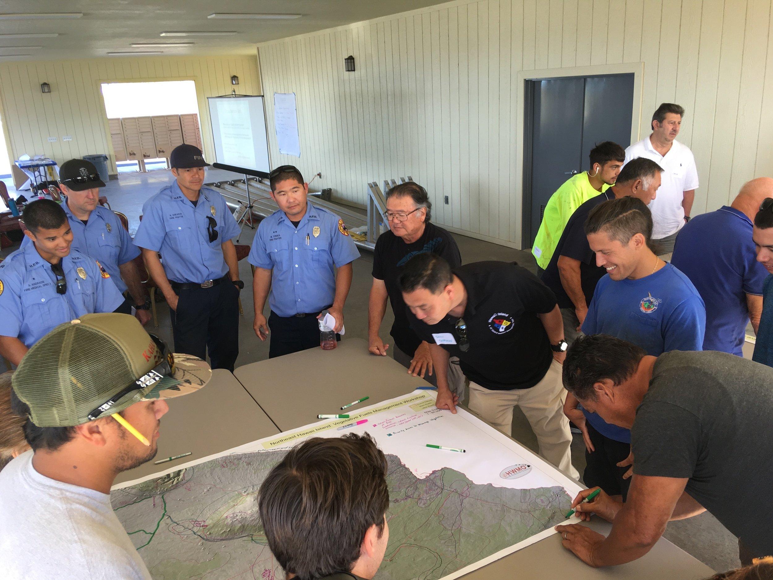 Hawaii Island Kailapa Vegetative Fuels Management Collaborative Action Planning Workshop_2_26_2019_26.jpg