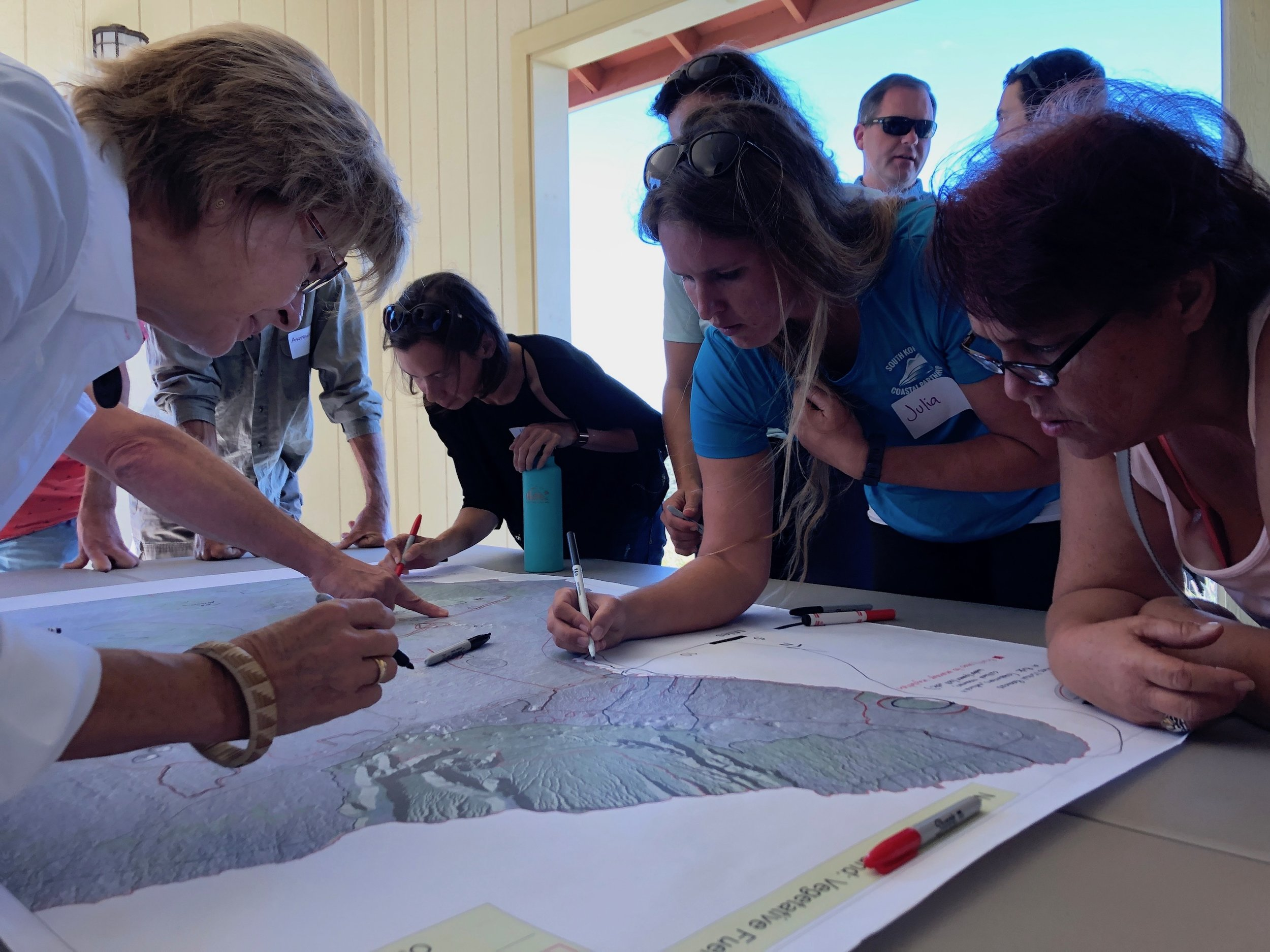 Hawaii Island Kailapa Vegetative Fuels Management Collaborative Action Planning Workshop_2_26_2019_41.jpg