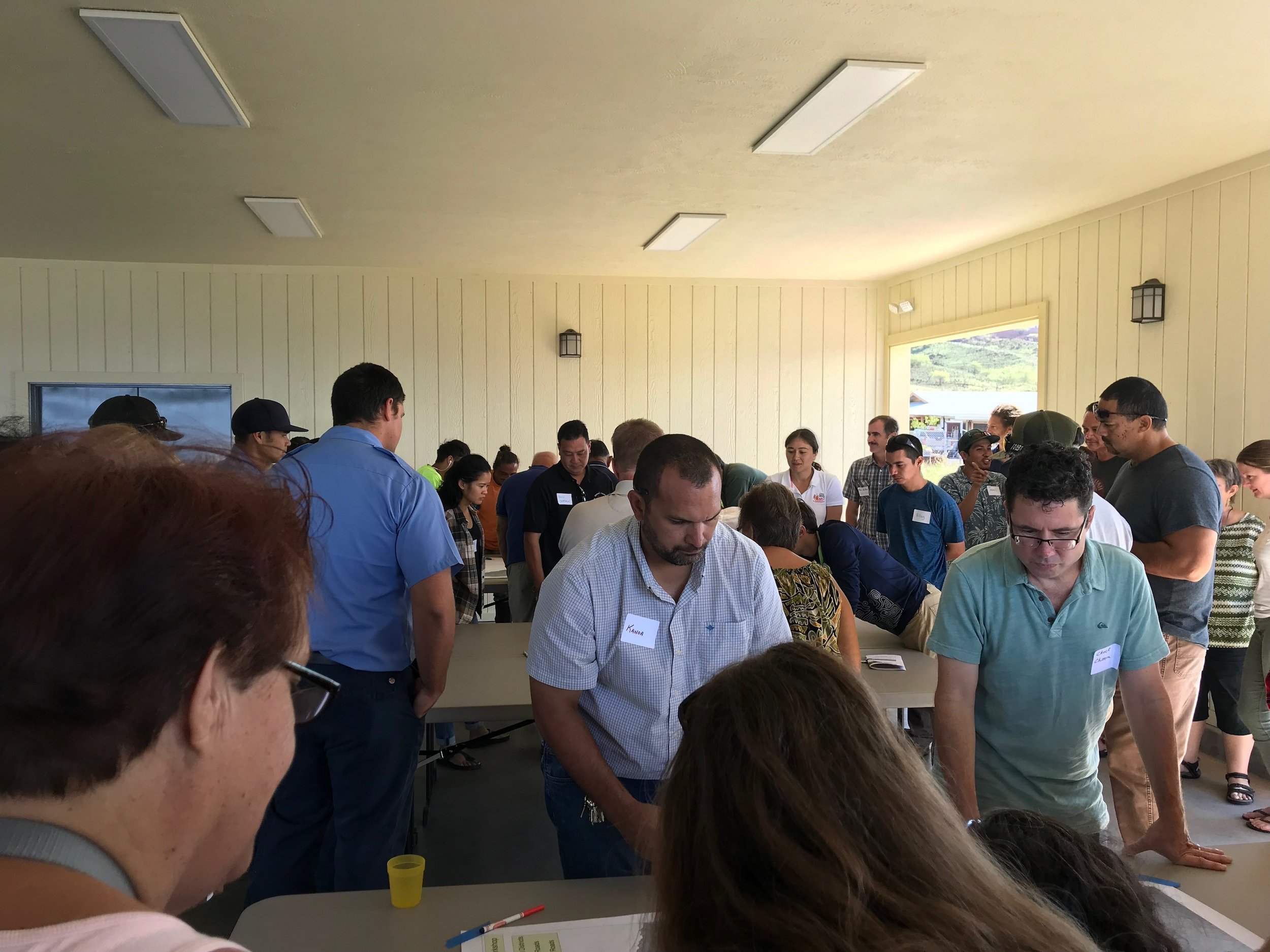 Hawaii Island Kailapa Vegetative Fuels Management Collaborative Action Planning Workshop_2_26_2019_47.jpg