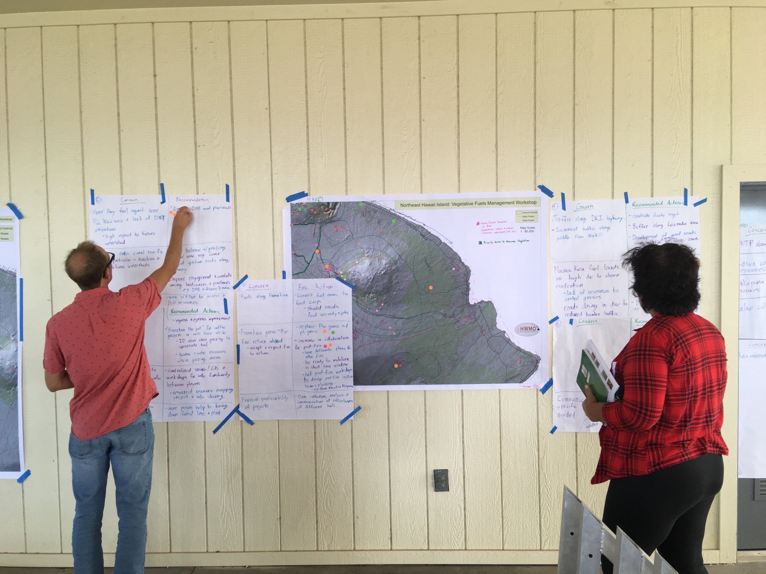 Hawaii Island Kailapa Vegetative Fuels Management Collaborative Action Planning Workshop_2_26_2019_72.jpg