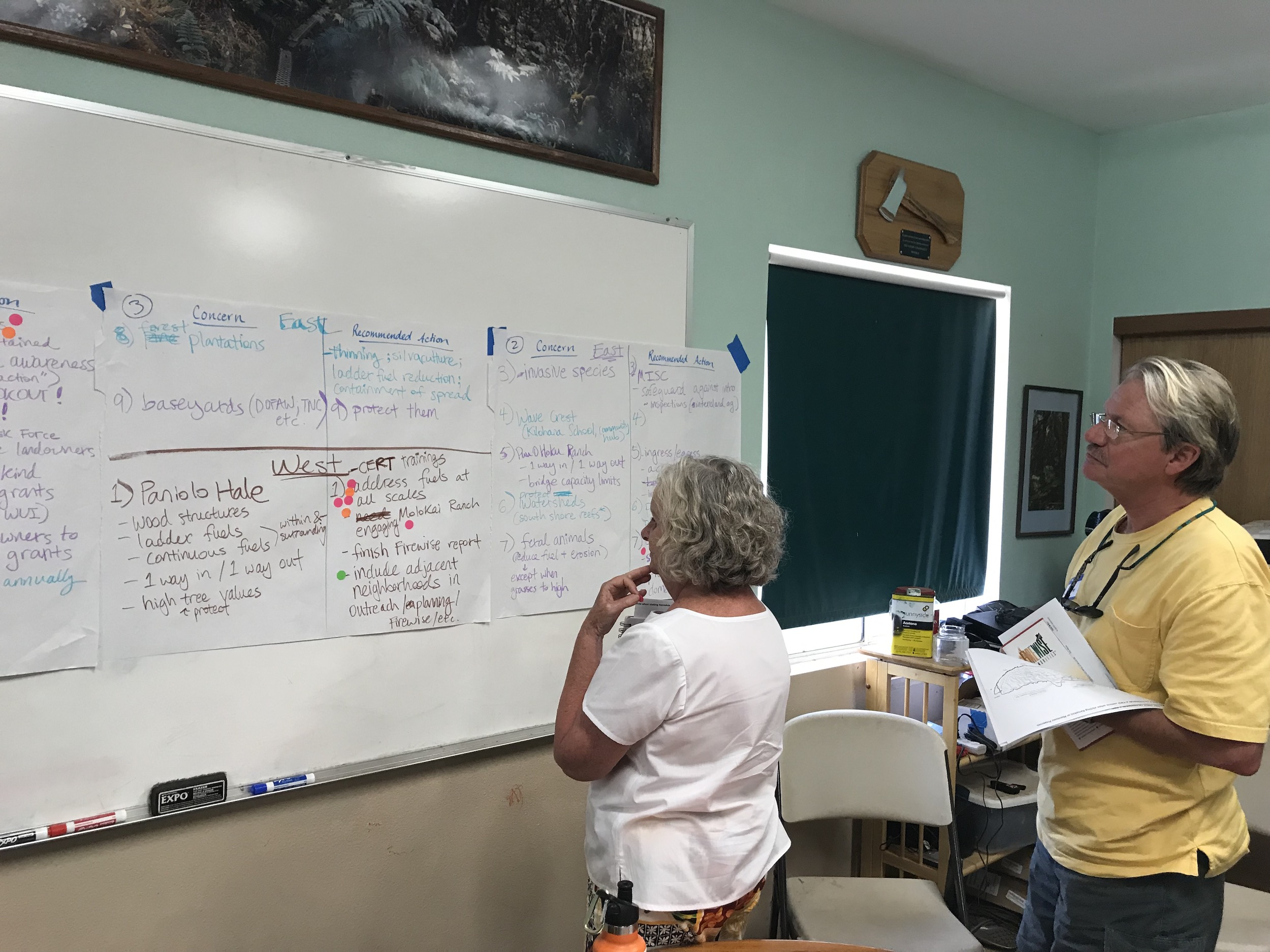 Molokai Vegetative Fuels Management Collaborative Action Planning and Mapping Workshop_4_2_2019_28.jpg