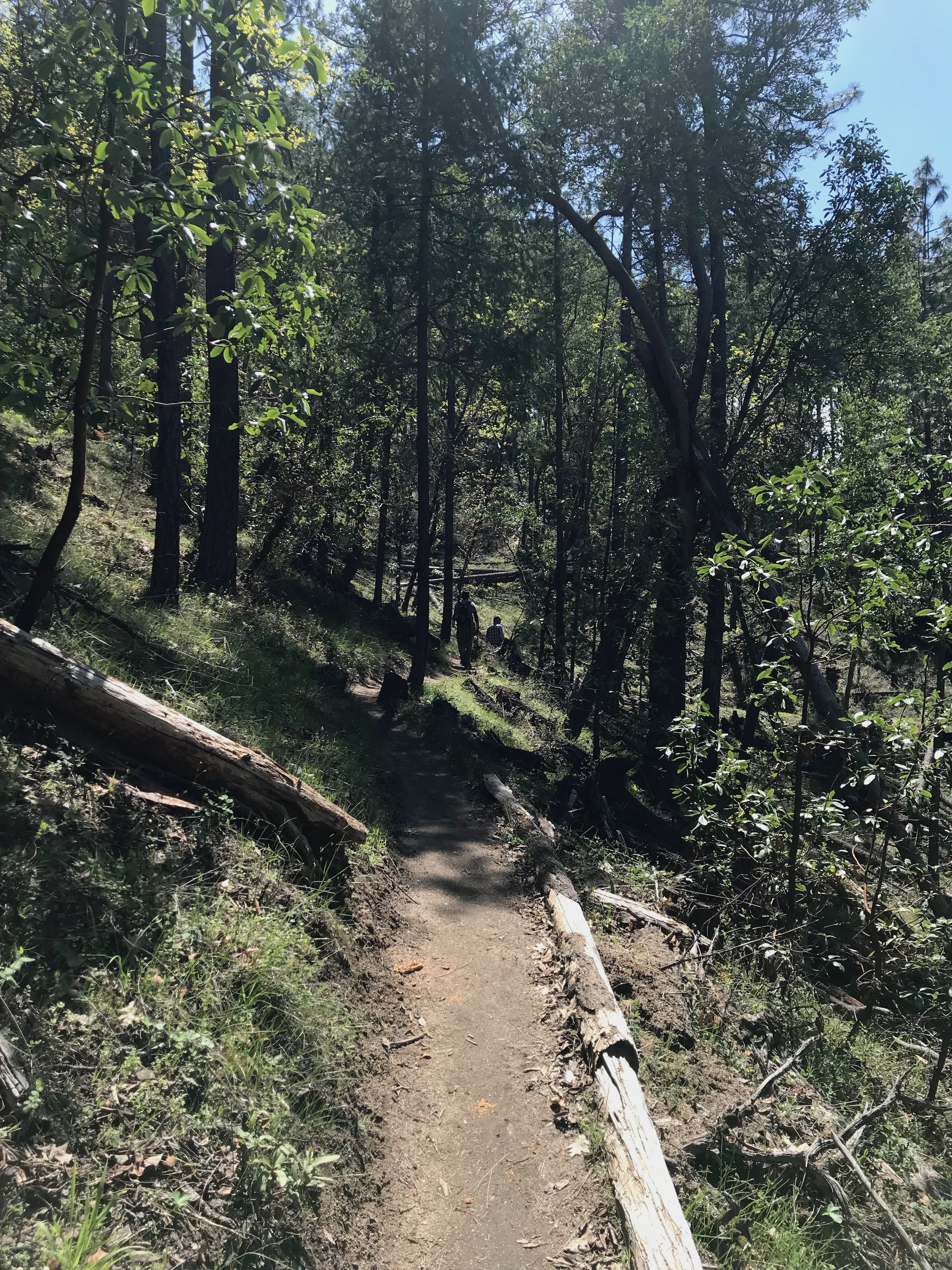 Beautiful trails abound.