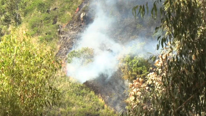 Wahiawa Fire. Credit: KITV4