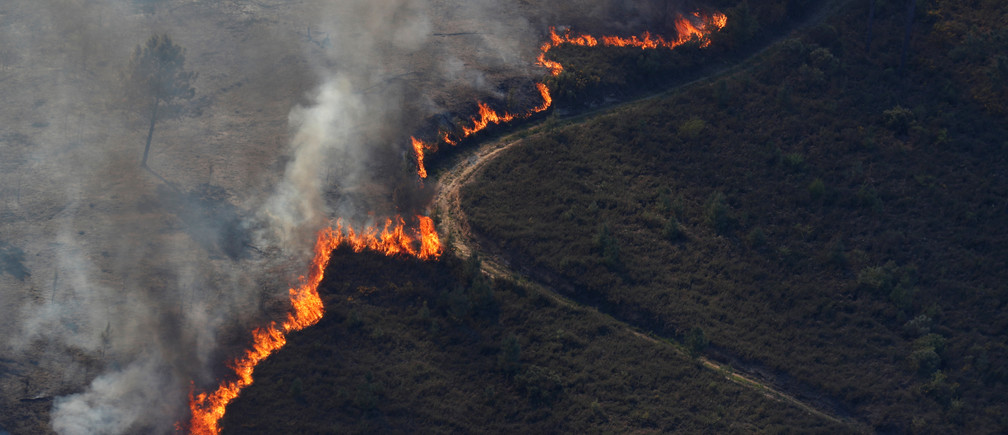 """Wildfires can have detrimental impacts on entire ecosystems."" Credit: Reuters / Rafael Marchante"