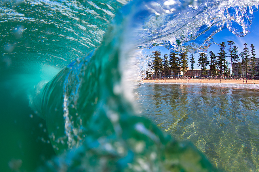 MANLY PINES