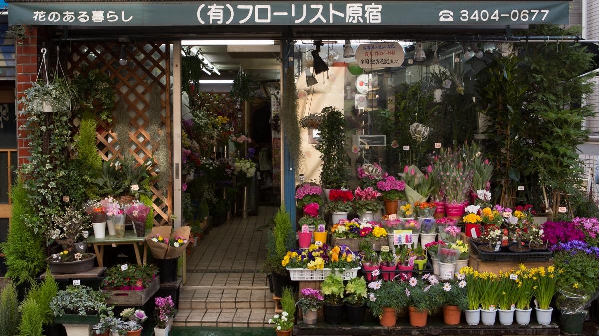 Flower Shop, Harajuku, Japan