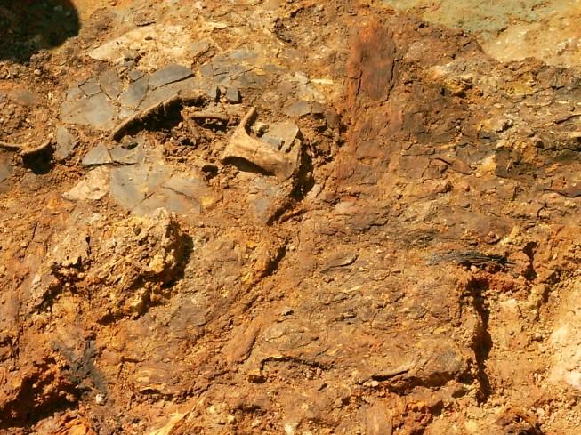 Останки сосудов с медом, обнаруженные в борджомском районе