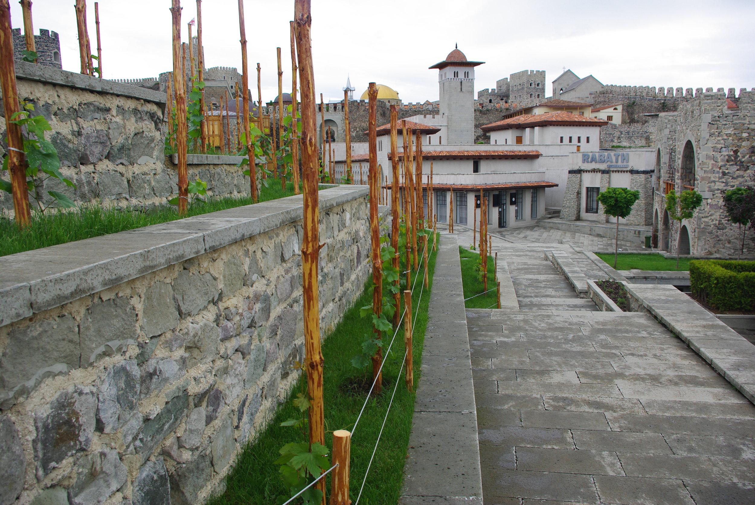 1206 Рабати Тбилиси ЮраIMGP0025.JPG