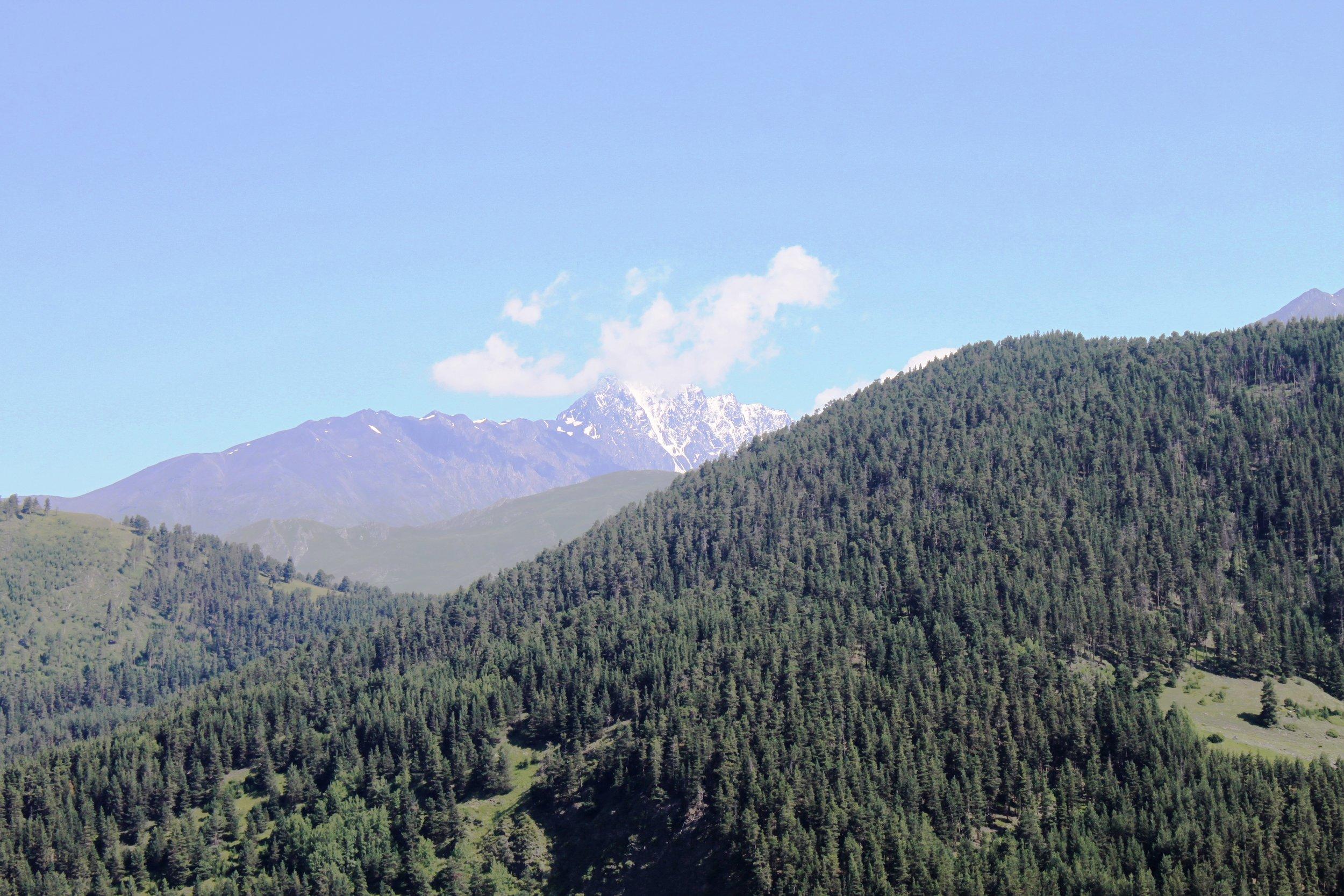 За той заснеженной горой - Чечня. Правее - Дагестан, до него 8 километров по тропе через перевал