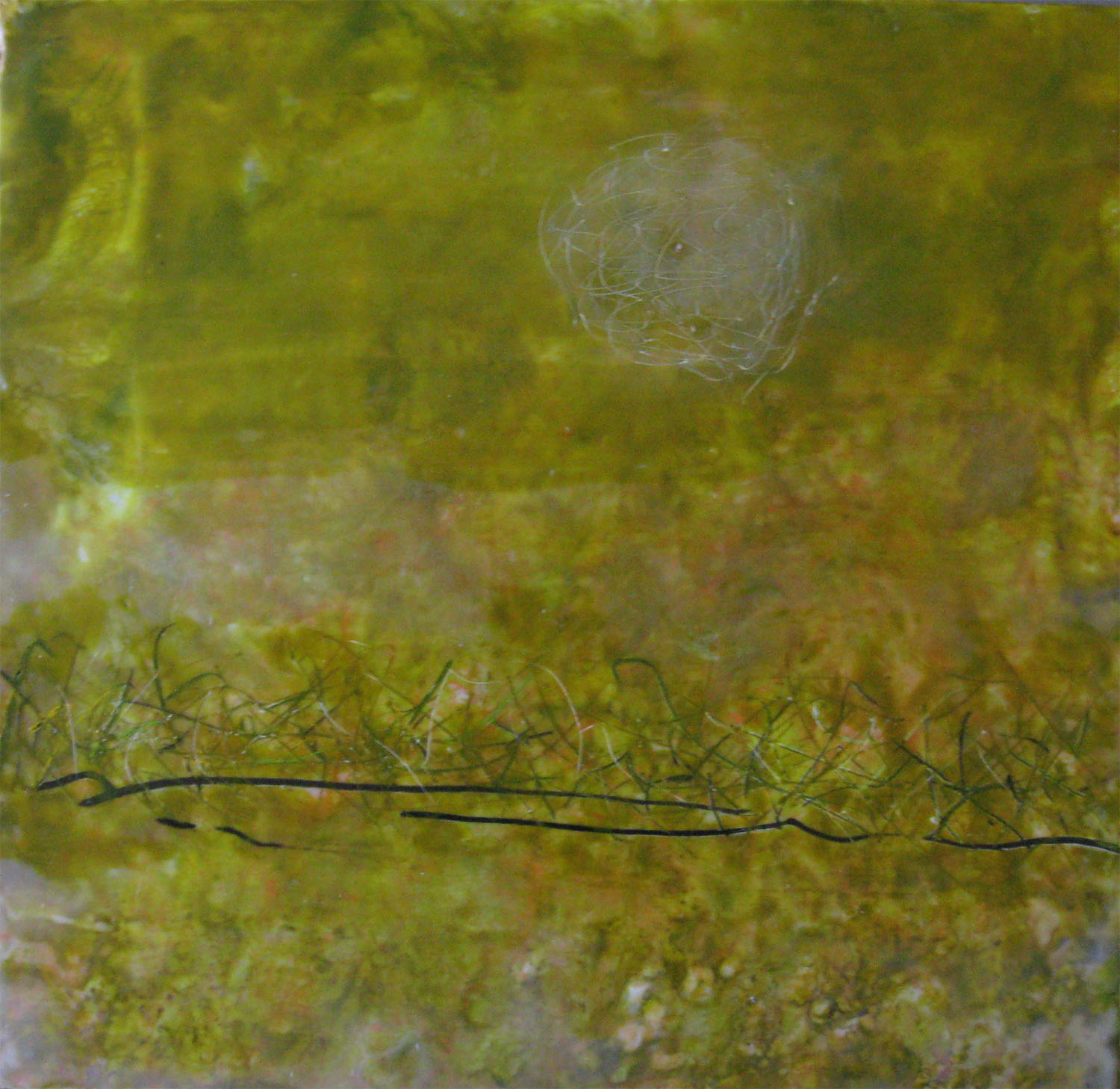 Always There, encaustic on paper, 16x16, 2010