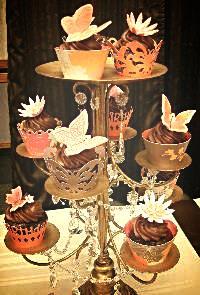 Copy of Designer Cupcakes Food Expo Nov. '10.JPG