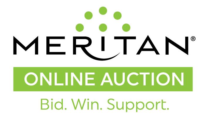 Meritan_OnlineAuction_Logo-F.jpg