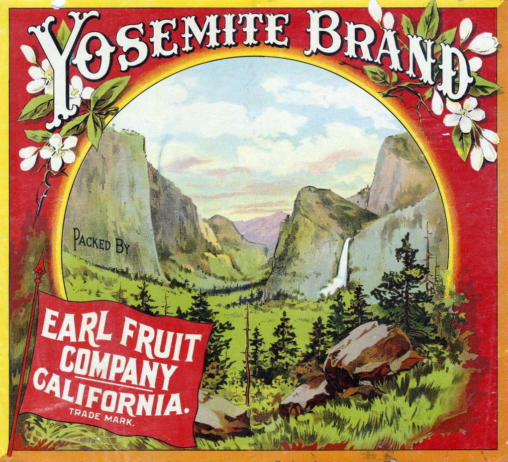 yosemite brand fruit label