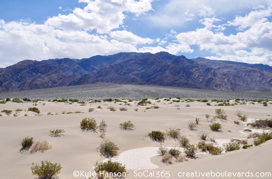 KyleHanson_CreativeBoulevards_KyleHanson_CreativeBoulevards_mesquite sand dunes.jpg