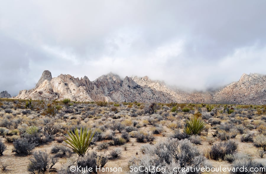 KyleHanson_CreativeBoulevards_granite mountains natural preserve.jpg