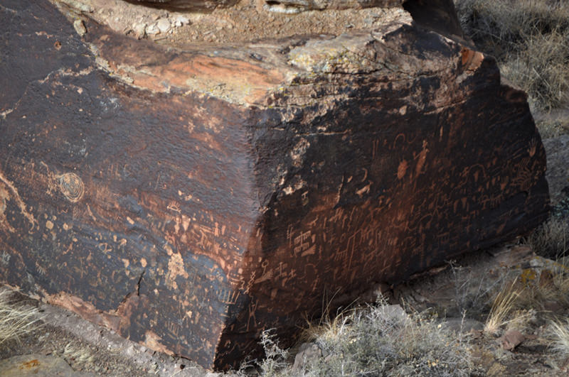 Newspaper Rock Petrified Forest