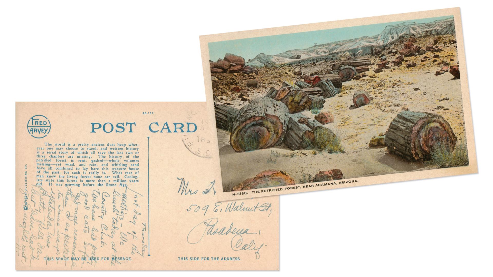 Petrified Forest National Park Postcards