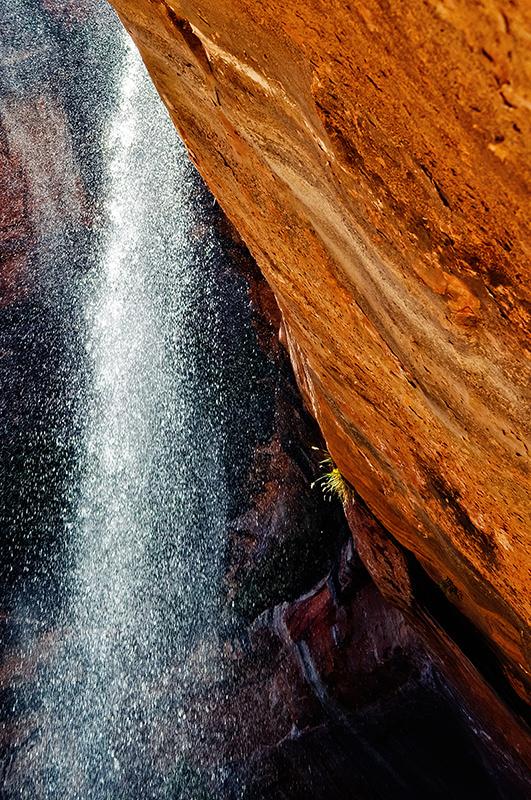 Zion Emerald Pool Trail