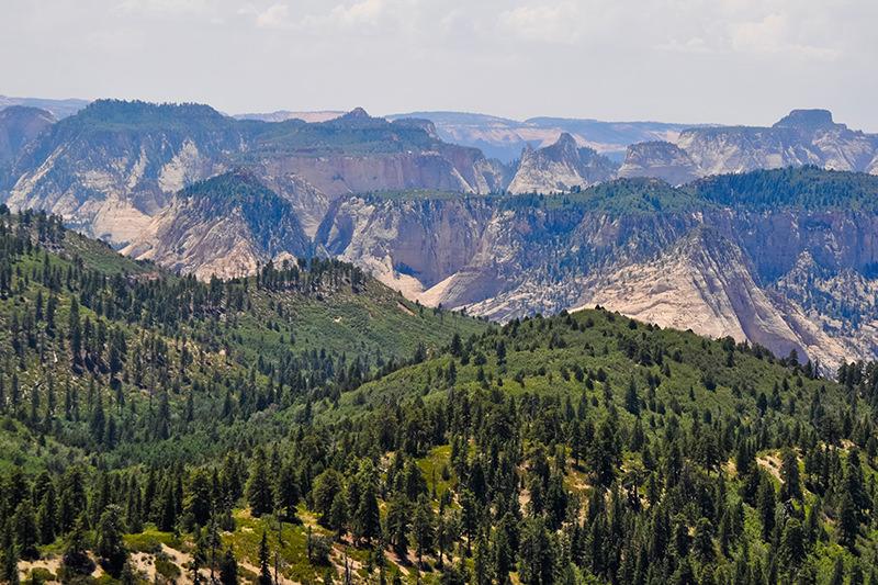 Zion Lava Point Overlook
