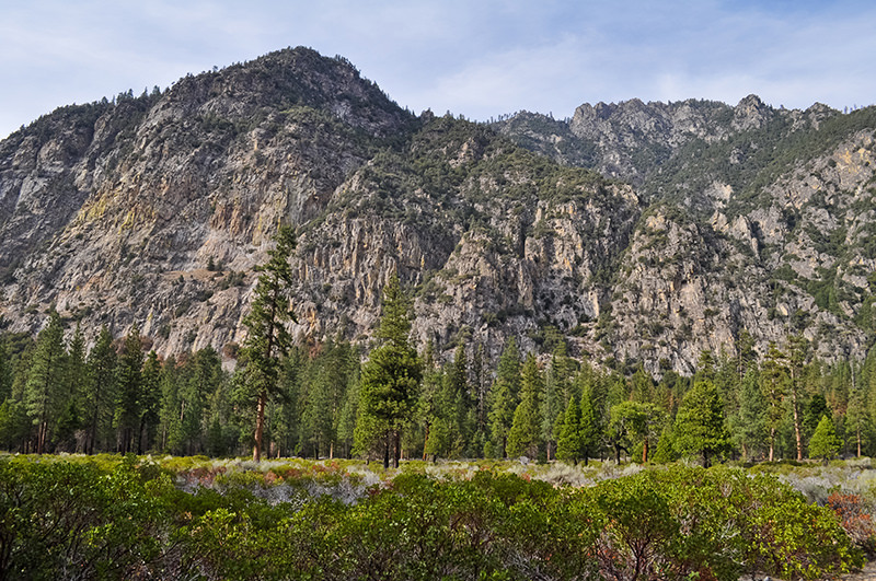 Canyon Viewpoint