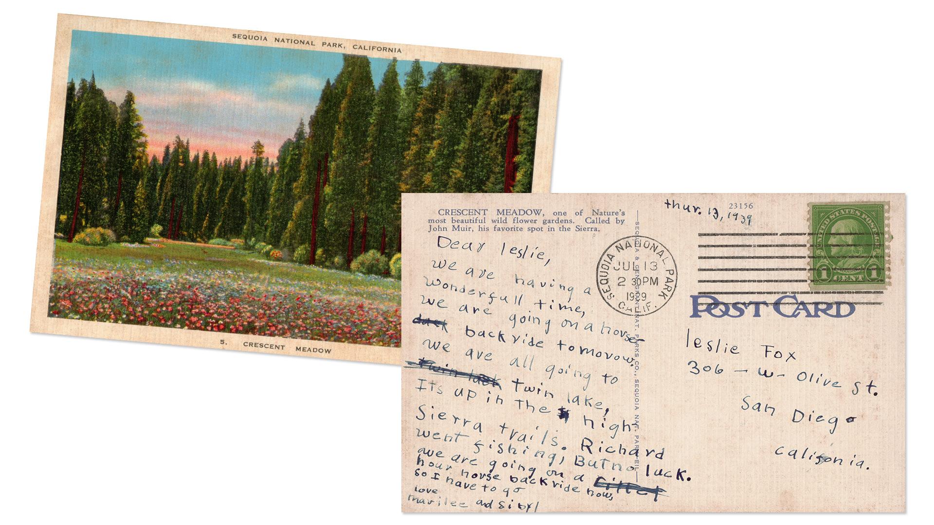 Crescent Meadow Sequoia National Park Vintage Postcard