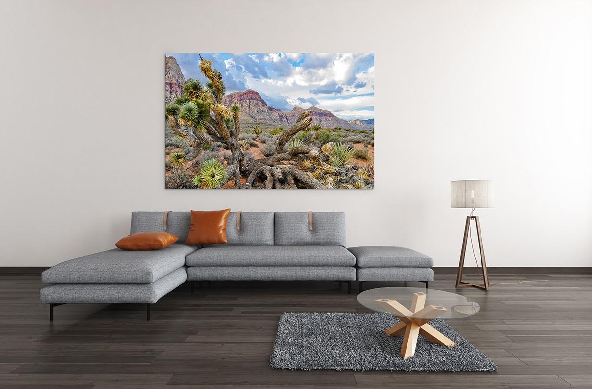 Red Rock Canyon Nevada Joshua Tree Fine Art Print