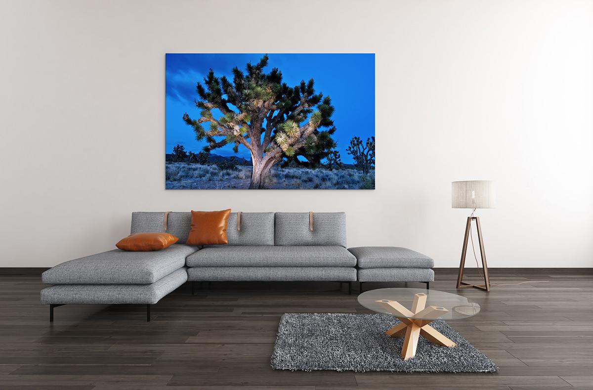 Joshua Tree Night Fine Art Print