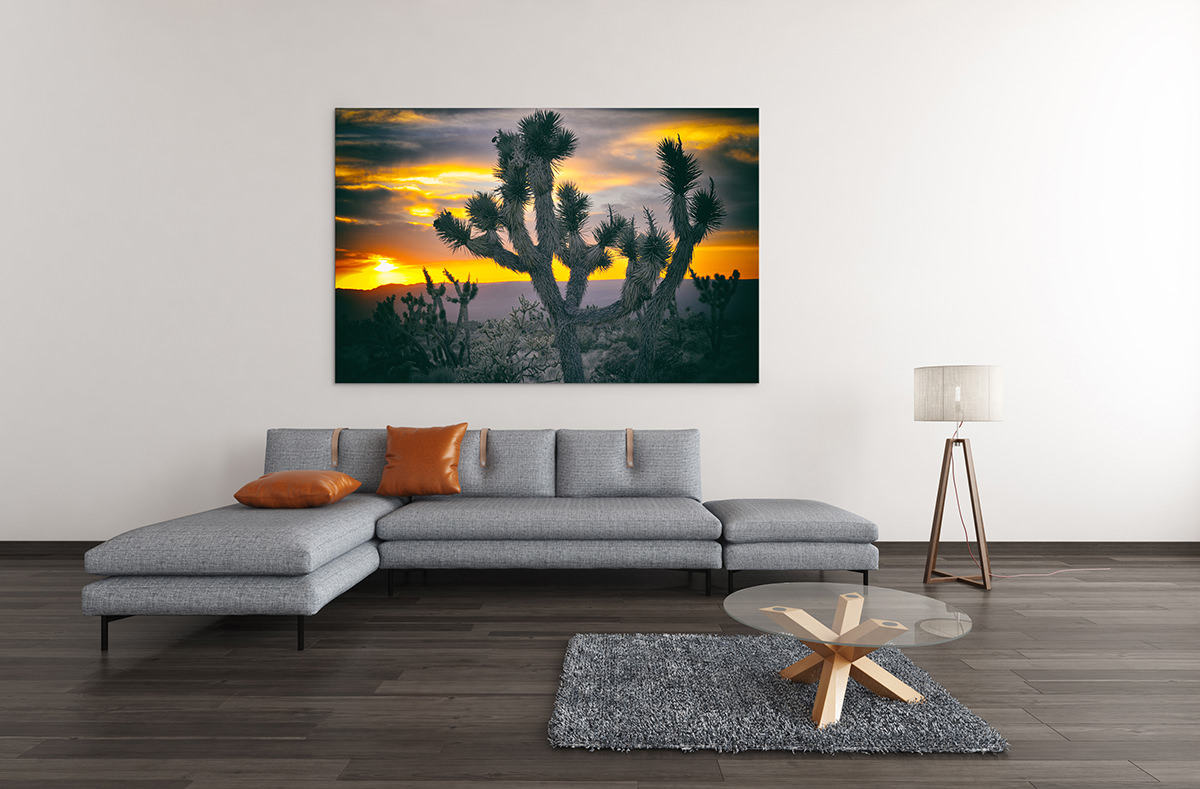 Joshua Tree Sunset Fine Art Print