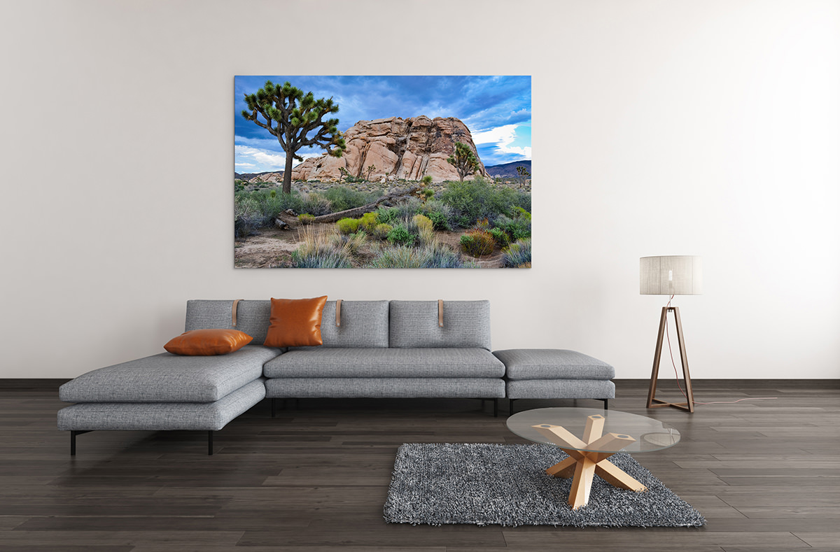 Joshua Tree National Park Fine Art Print