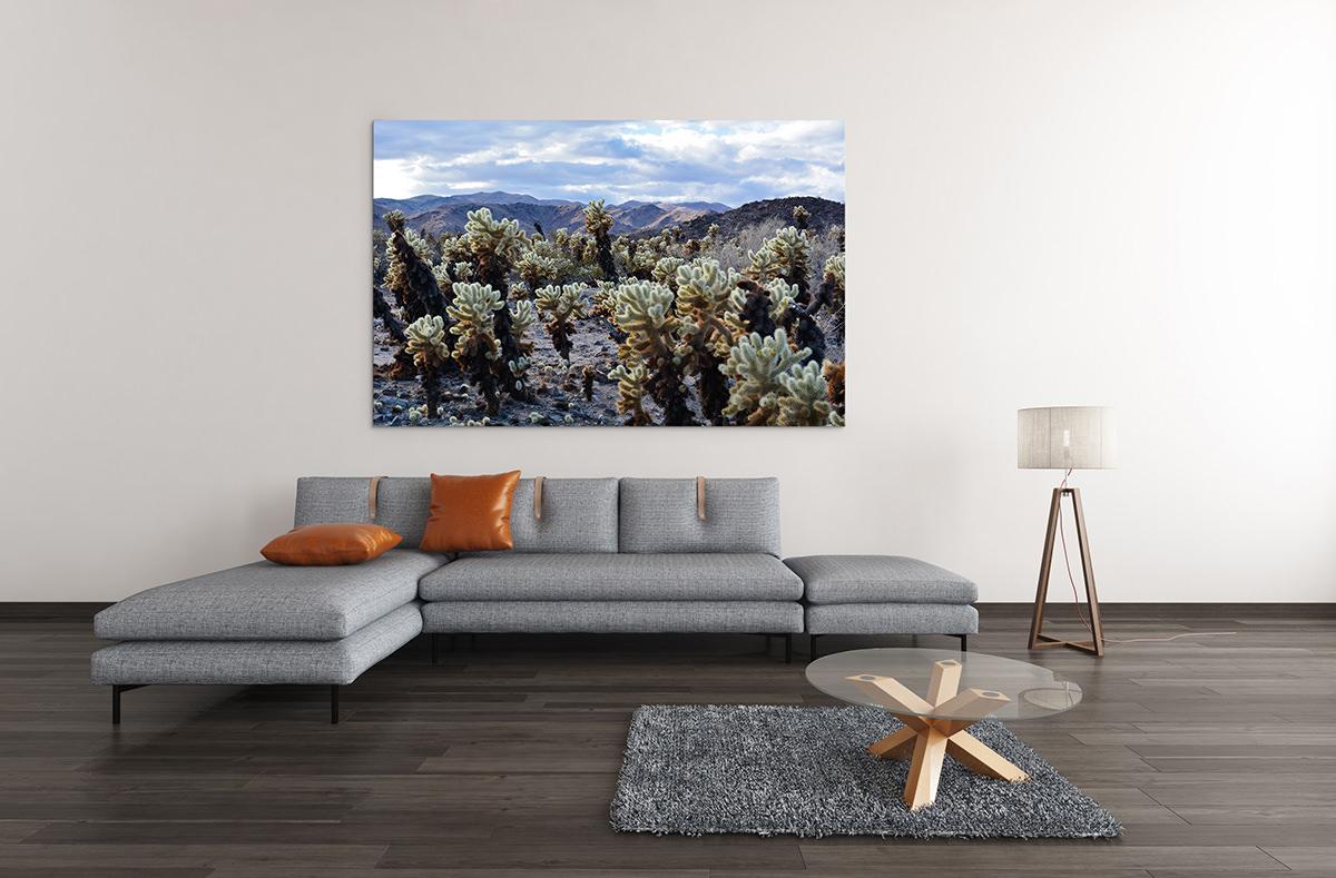 Mojave Cactus Garden Fine Art Print
