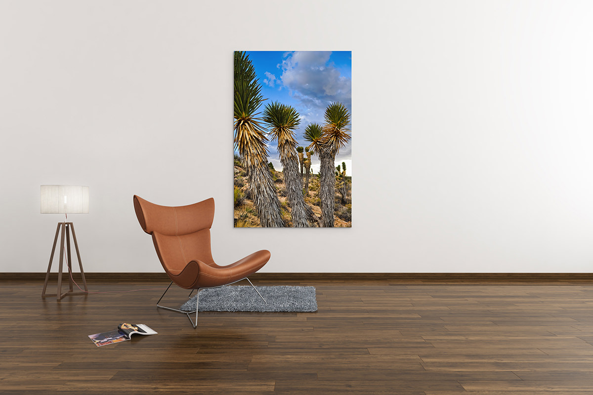 Mojave Joshua Tree Fine Art Print