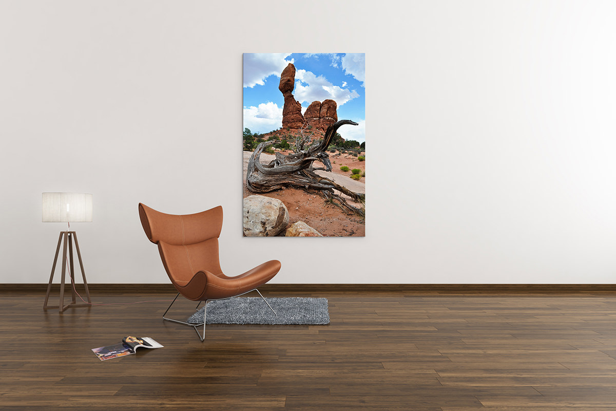 Arches Balanced Rock Utah Fine Art Print