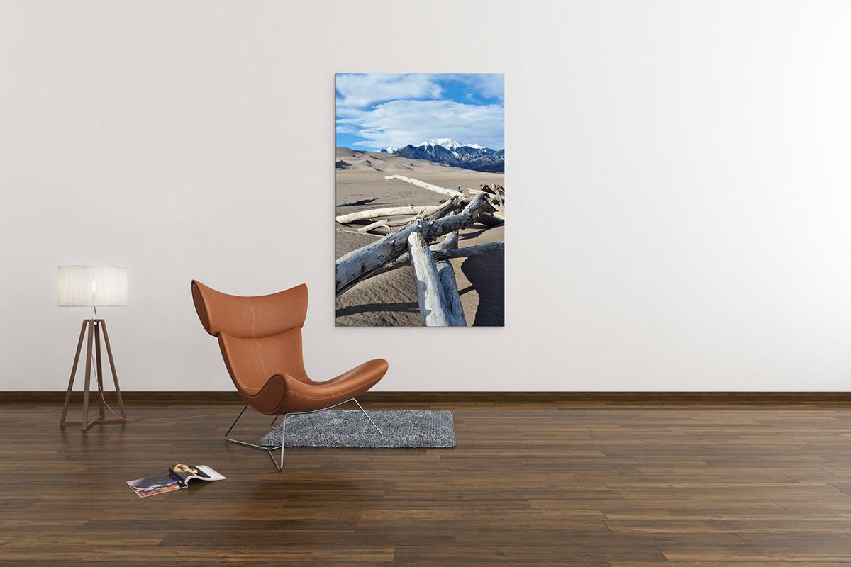 Great Sand Dunes Driftwood Colorado Fine Art Print