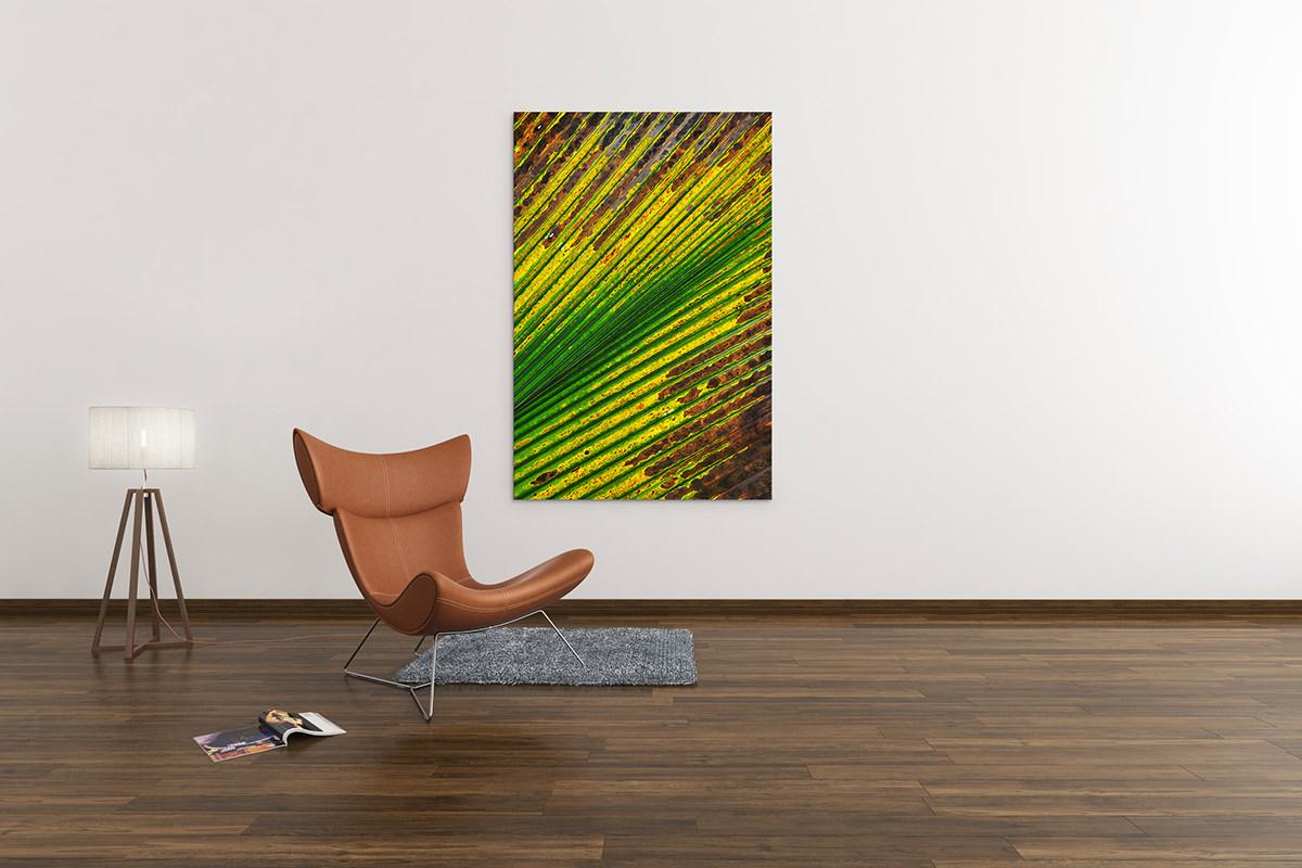 Palm Leaf Fine Art Print