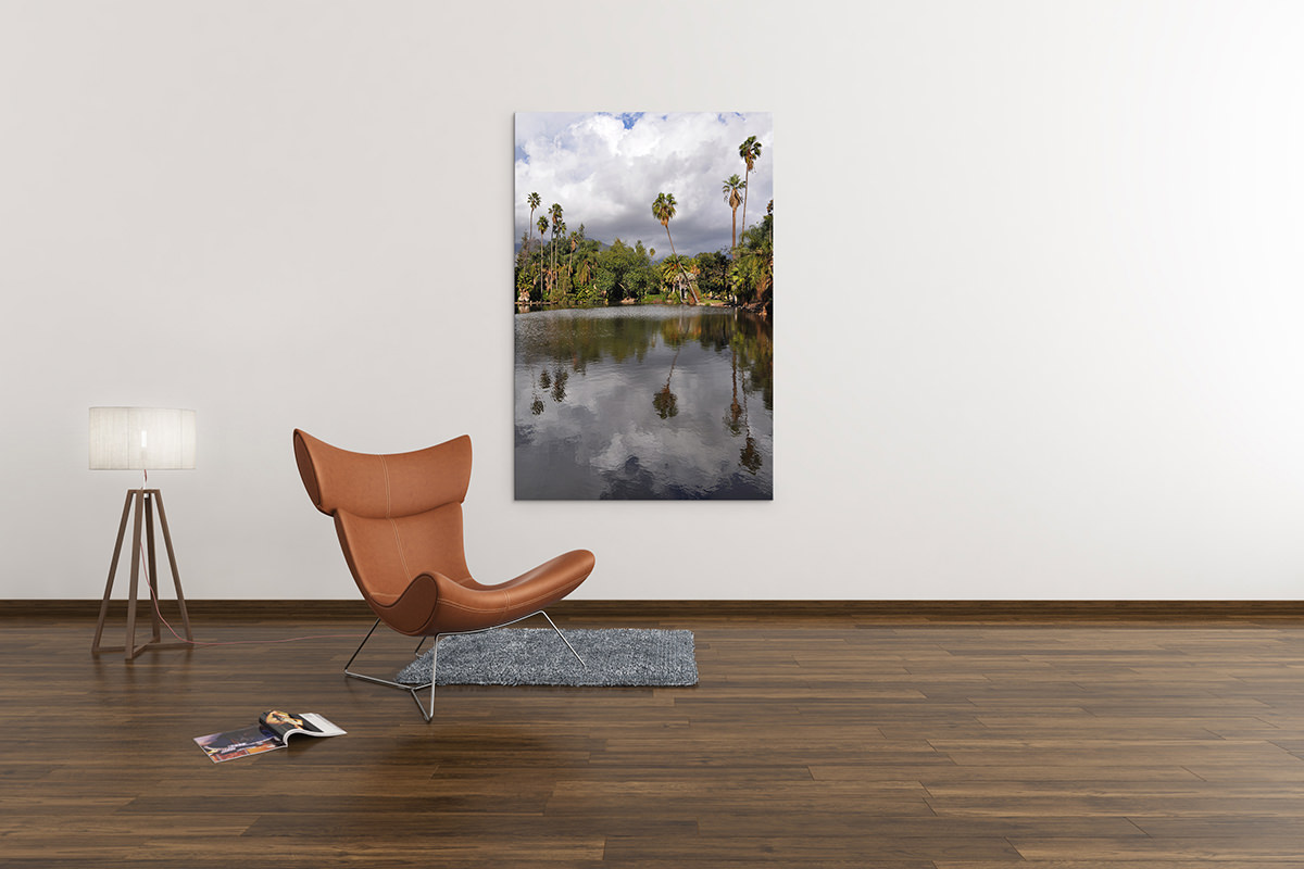 Los Angeles Reflections Fine Art Print