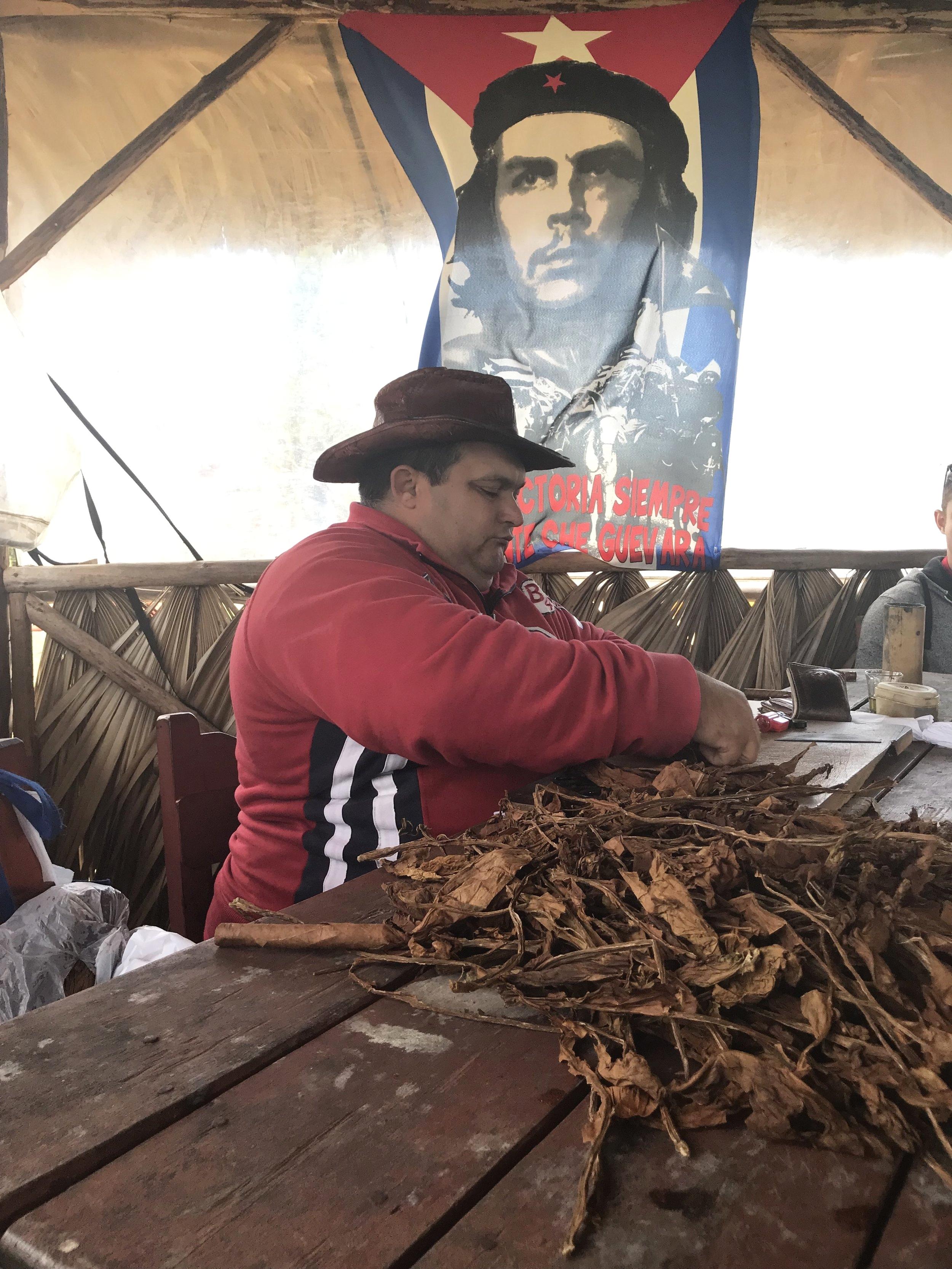 Cigar rolling in Vinales by Nate Jones