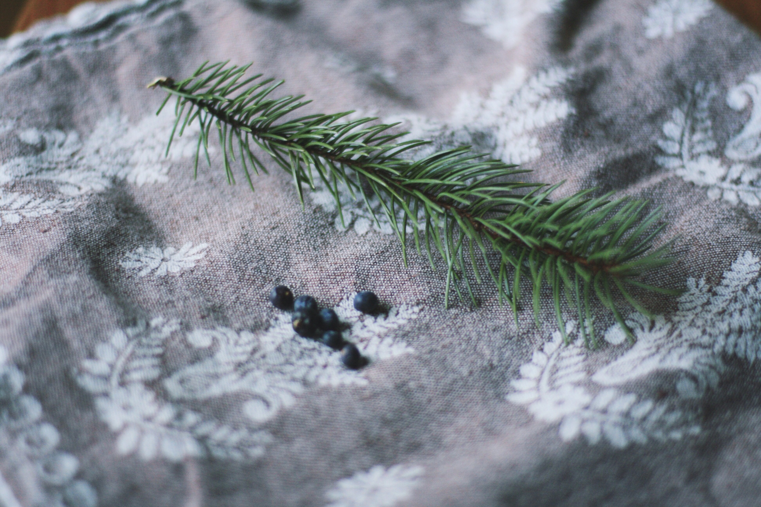 Spruce and Juniper Berries