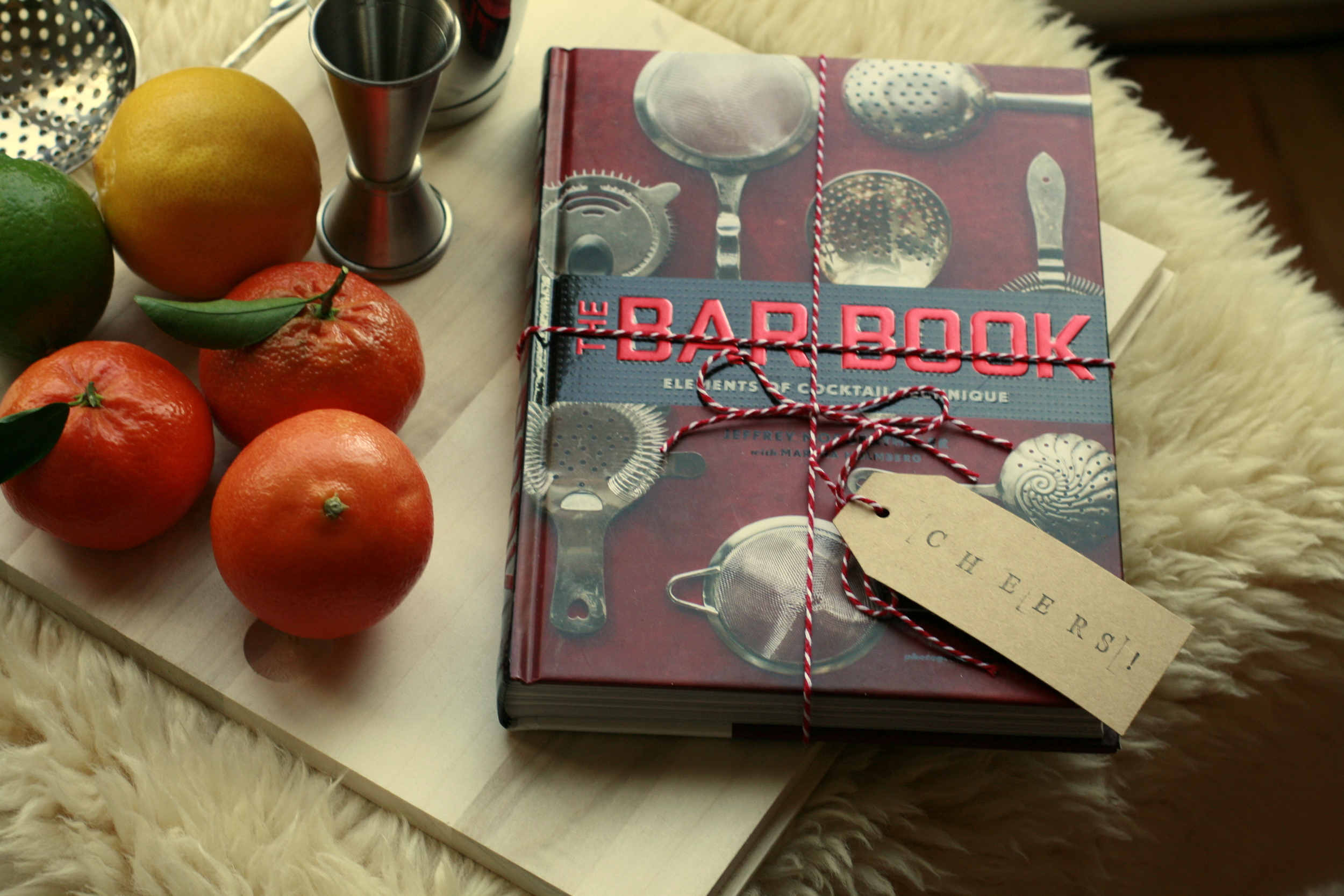 Want to learn how to make excellent cocktails? Keep this book close, and refer to it often.