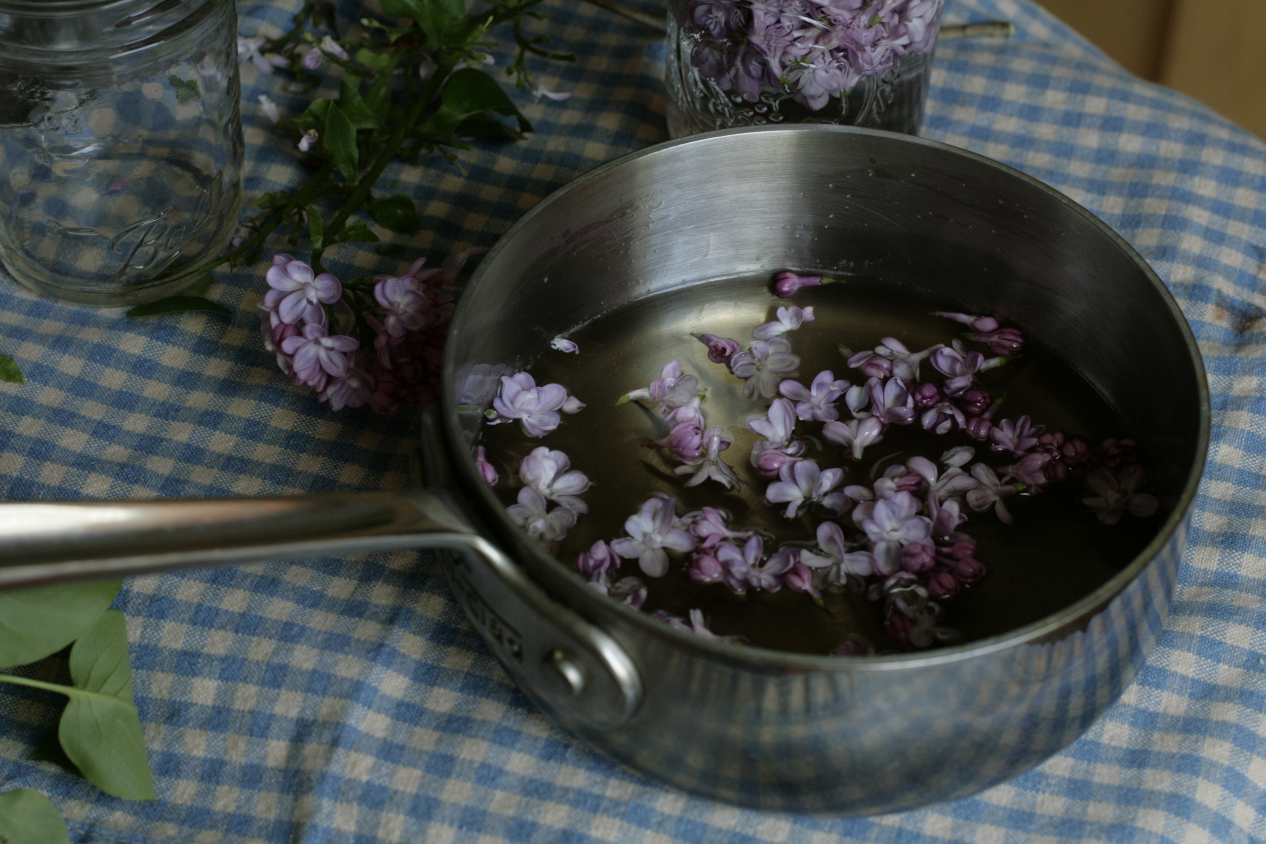 making lilac syrup