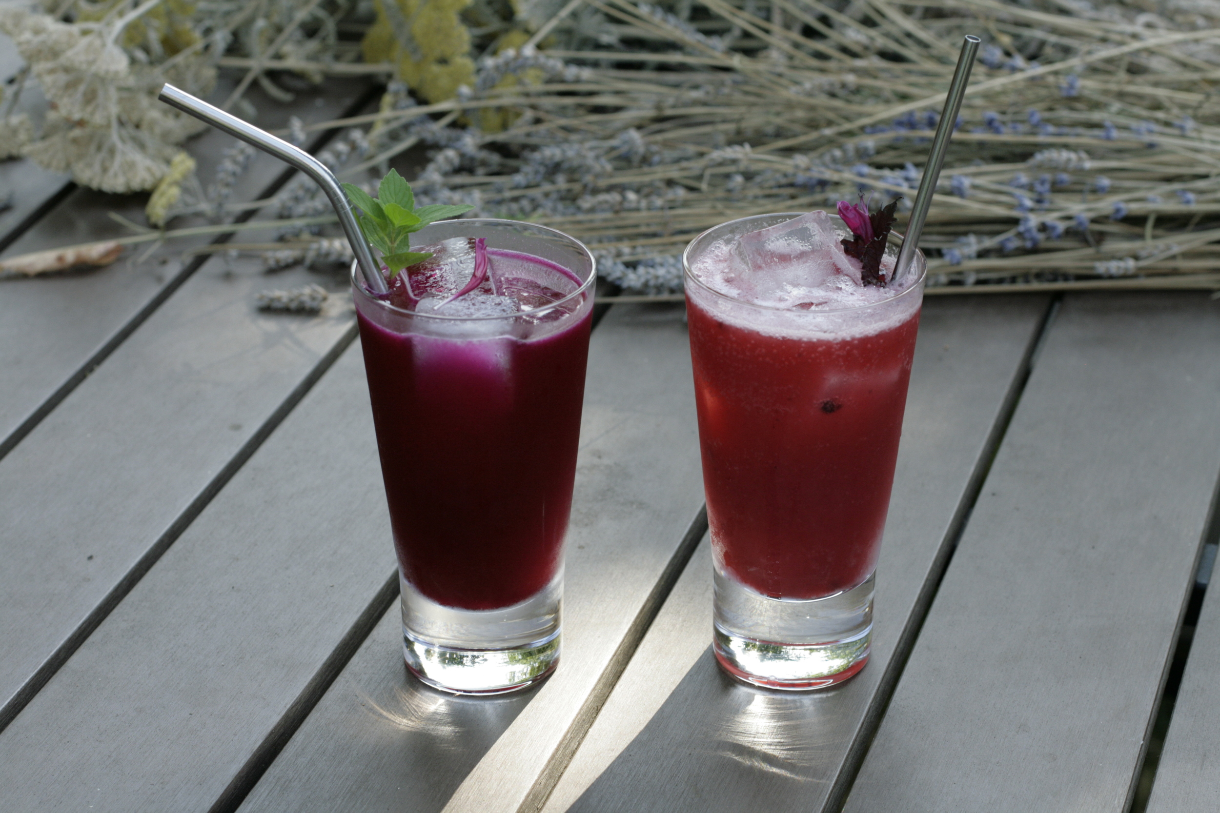 Beet Mint Cooler and Plum Shiso Smash