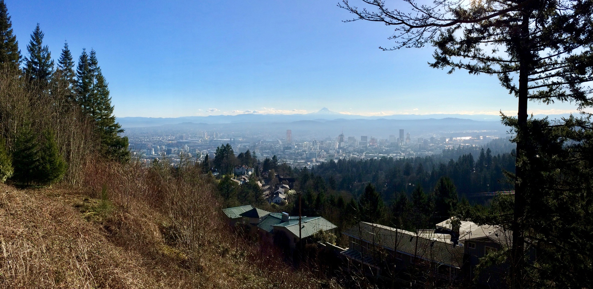The view from Pittock Mansion.This was not yesterday. It was raining yesterday.