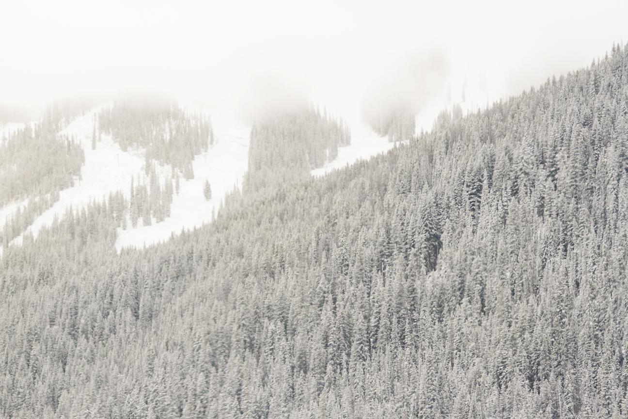 103013_snow_3_web.jpg